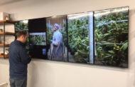 Medical Marijuana Demand Leaves Dispensary with Shortage
