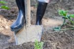 Disciplinary Actions Filed For Unsafe Digging Practices