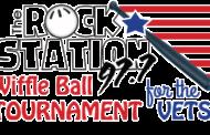 Wiffle Ball Tournament 2018